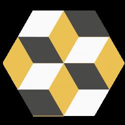 Hexagone H125